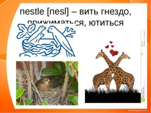 nestle [nesl] – вить гнездо, прижиматься, ютиться