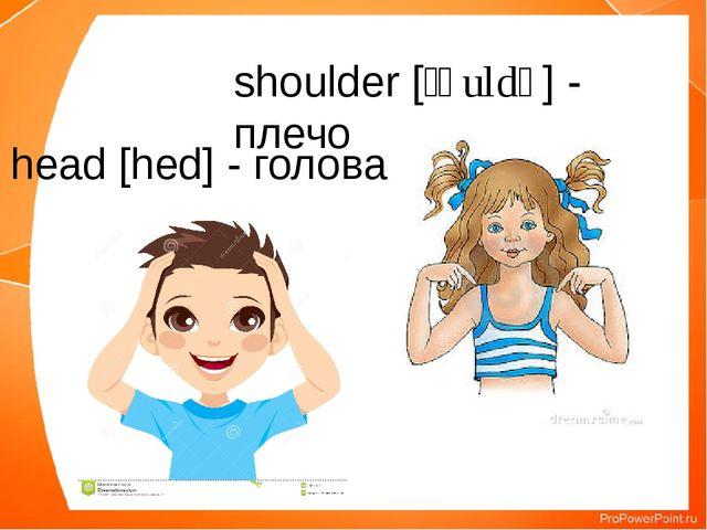 head [hed] - голова shoulder [ʃəuldə] - плечо
