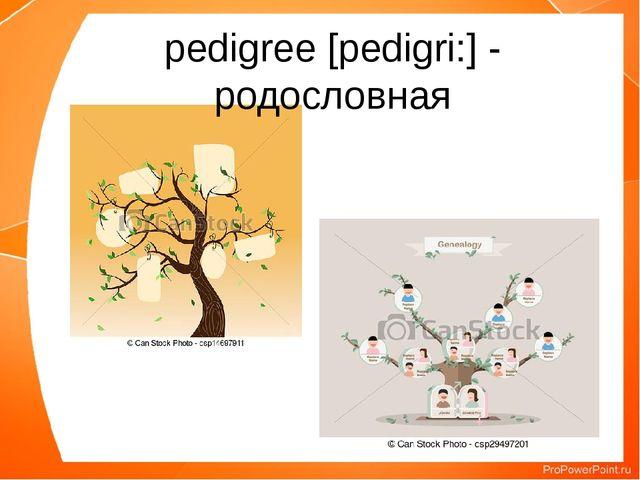 pedigree [pedigri:] - родословная