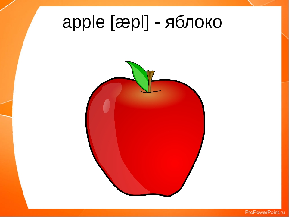 apple [æpl] - яблоко