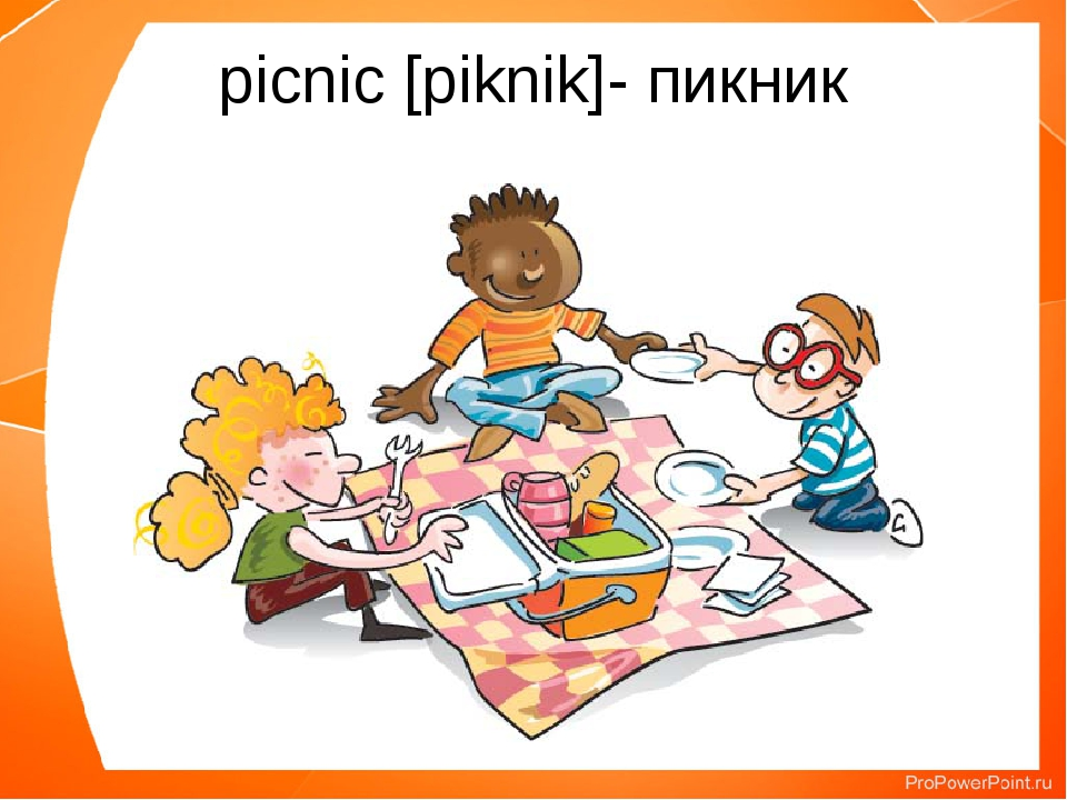 picnic [piknik]- пикник