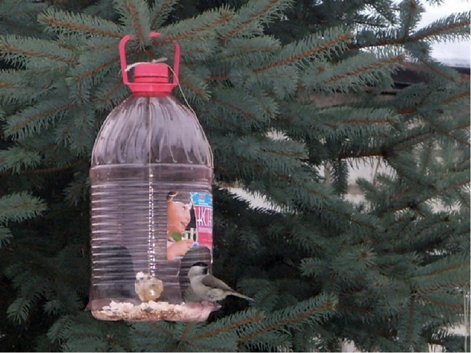 Кормушка своими руками для птиц из пластиковой бутылки 5 литров