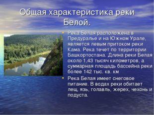Общая характеристика реки Белой. Река Белая расположена в Предуралье и на Южн
