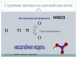 Строение молекулы азотной кислоты: O H O N Структурная формула O