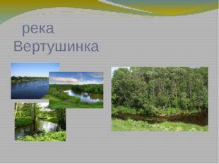 река Вертушинка