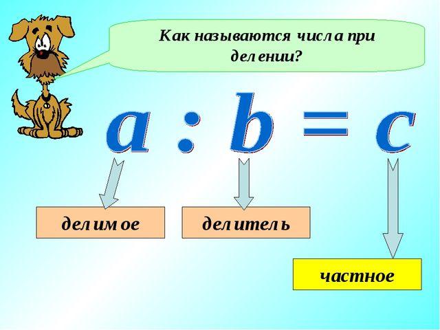 Как называются числа при делении? делимое делитель частное
