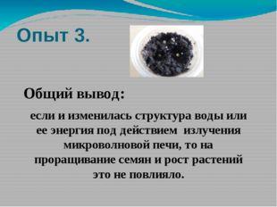 Опыт 3. Общий вывод: если и изменилась структура воды или ее энергия под дейс