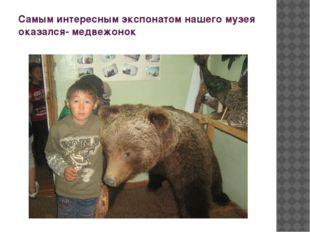Самым интересным экспонатом нашего музея оказался- медвежонок