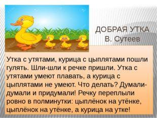 ДОБРАЯ УТКА В. Сутеев  Утка с утятами, курица с цыплятами пошли гулять. Шли-
