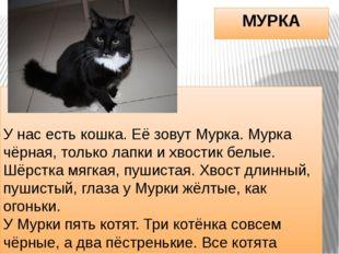 МУРКА У нас есть кошка. Её зовут Мурка. Мурка чёрная, только лапки и хвостик