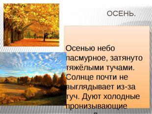 ОСЕНЬ. Осенью небо пасмурное, затянуто тяжёлыми тучами. Солнце почти не выгл