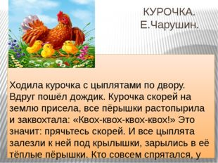 КУРОЧКА. Е.Чарушин. Ходила курочка с цыплятами по двору. Вдруг пошёл дождик.