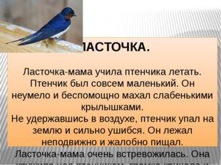 ЛАСТОЧКА. Ласточка-мама учила птенчика летать. Птенчик был совсем маленький.