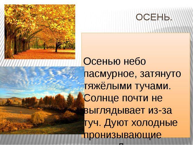 ОСЕНЬ. Осенью небо пасмурное, затянуто тяжёлыми тучами. Солнце почти не выгл...