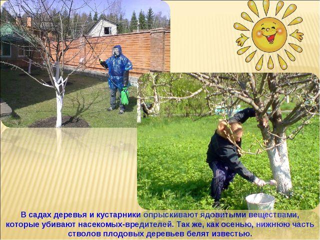 Картинки по теме труд весной