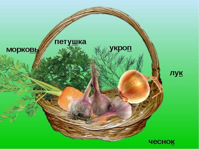 петушка укроп лук чеснок морковь
