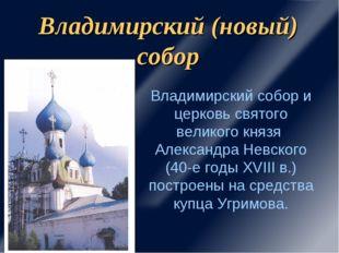 Владимирский (новый) собор Владимирский собор и церковь святого великого княз