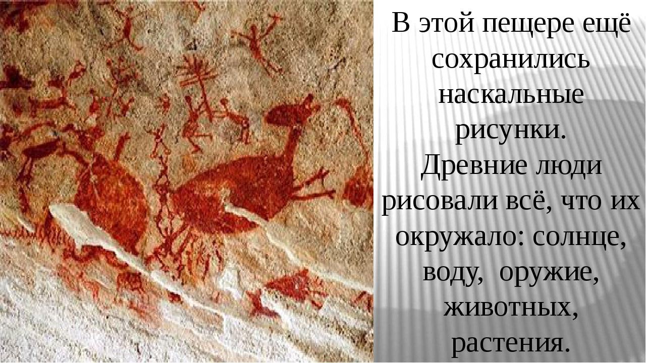 В этой пещере ещё сохранились наскальные рисунки. Древние люди рисовали всё,...