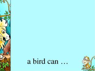 a bird can …