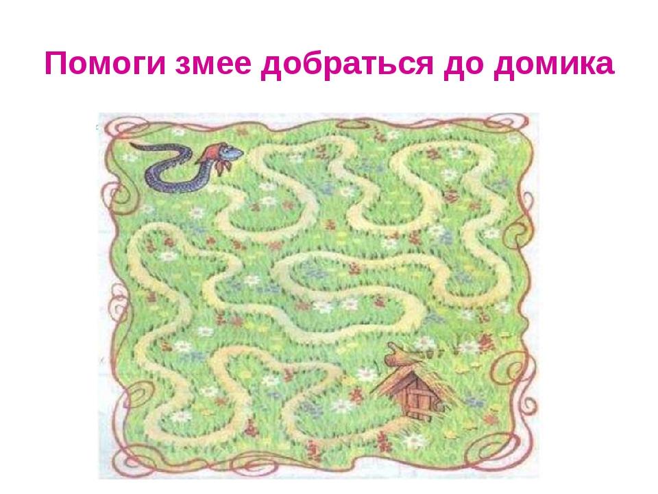 Помоги змее добраться до домика