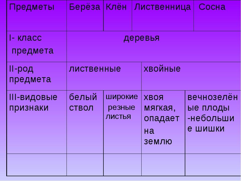 ПредметыБерёзаКлёнЛиственница  Сосна I- класс предмета деревья II-род п...