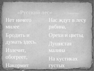 «Русский лес»С.Никитин Нет ничего милее Бродить и думать здесь. Излечит,