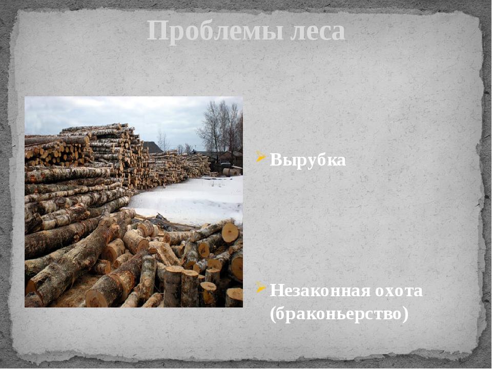 Проблемы леса Вырубка Незаконная охота (браконьерство)