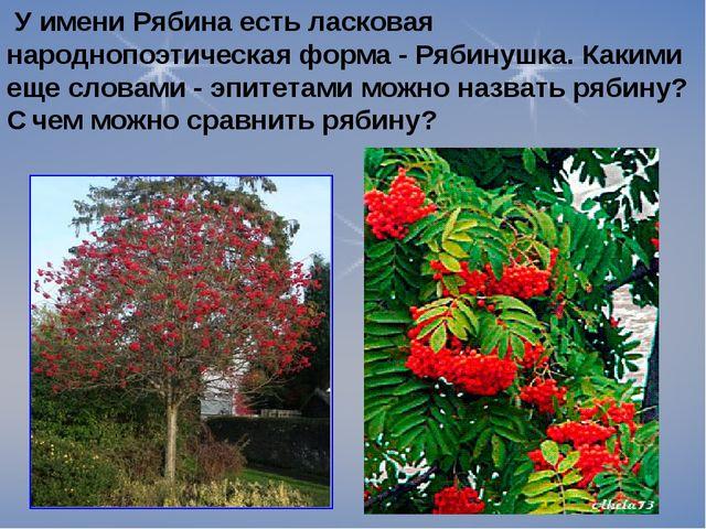 У имени Рябина есть ласковая народнопоэтическая форма - Рябинушка. Какими ещ...