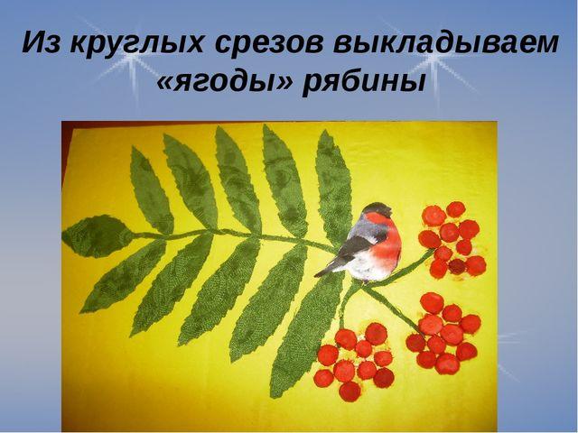 Из круглых срезов выкладываем «ягоды» рябины