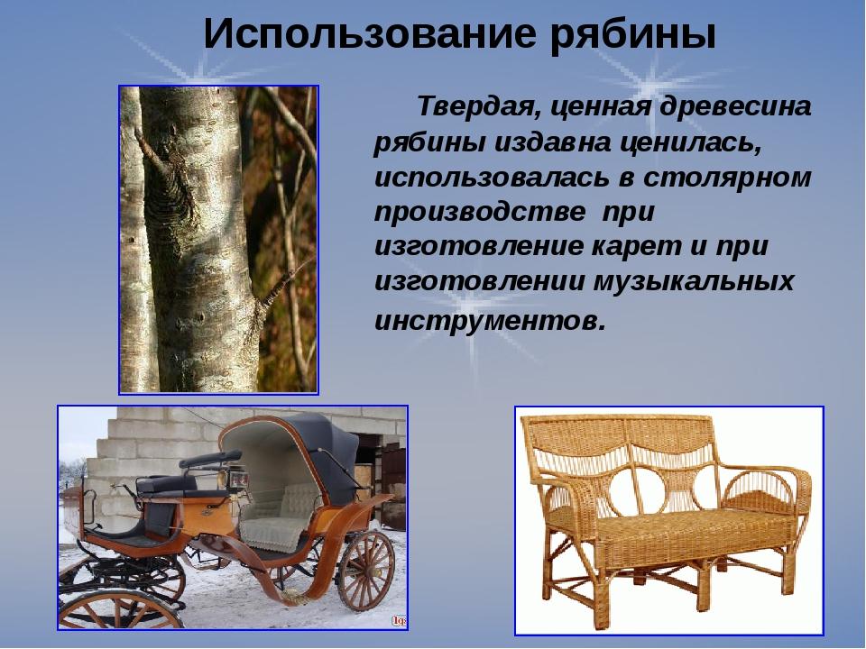 Использование рябины Твердая, ценная древесина рябины издавна ценилась, испол...