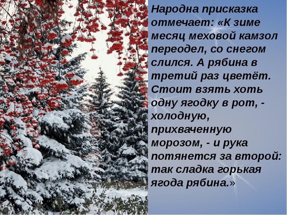 Народна присказка отмечает: «К зиме месяц меховой камзол переодел, со снегом...