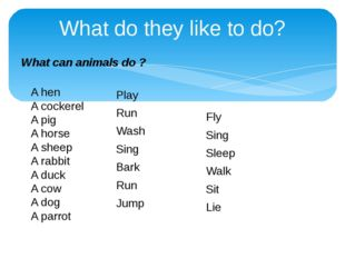 What do they like to do? What can animals do ? A hen A cockerel A pig A horse