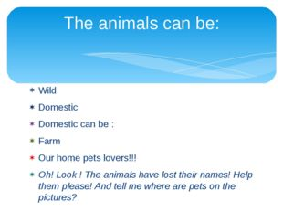 Wild Domestic Domestic can be : Farm Our home pets lovers!!! Oh! Look ! The a