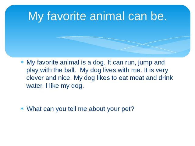 favorite animal dog essay I like all animals in general, but i think my favorite would be a dog a dog is a domestic animal and can be seen in almost all houses and streets of my country the best part about dogs is that apart from being a great keeper, they also shower love on their owners.