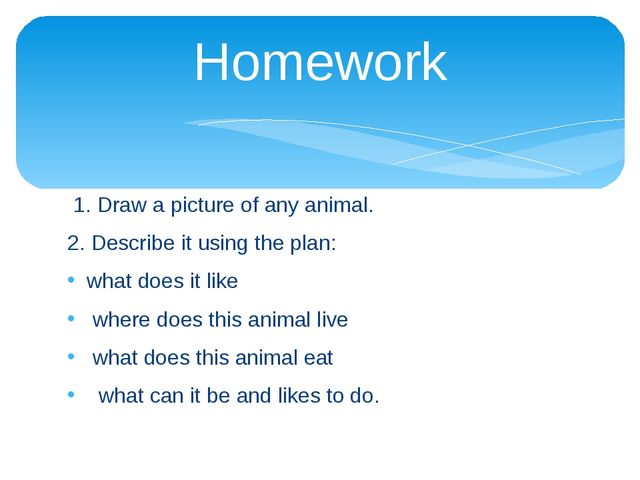 Homework 1. Draw a picture of any animal. 2. Describe it using the plan: what...
