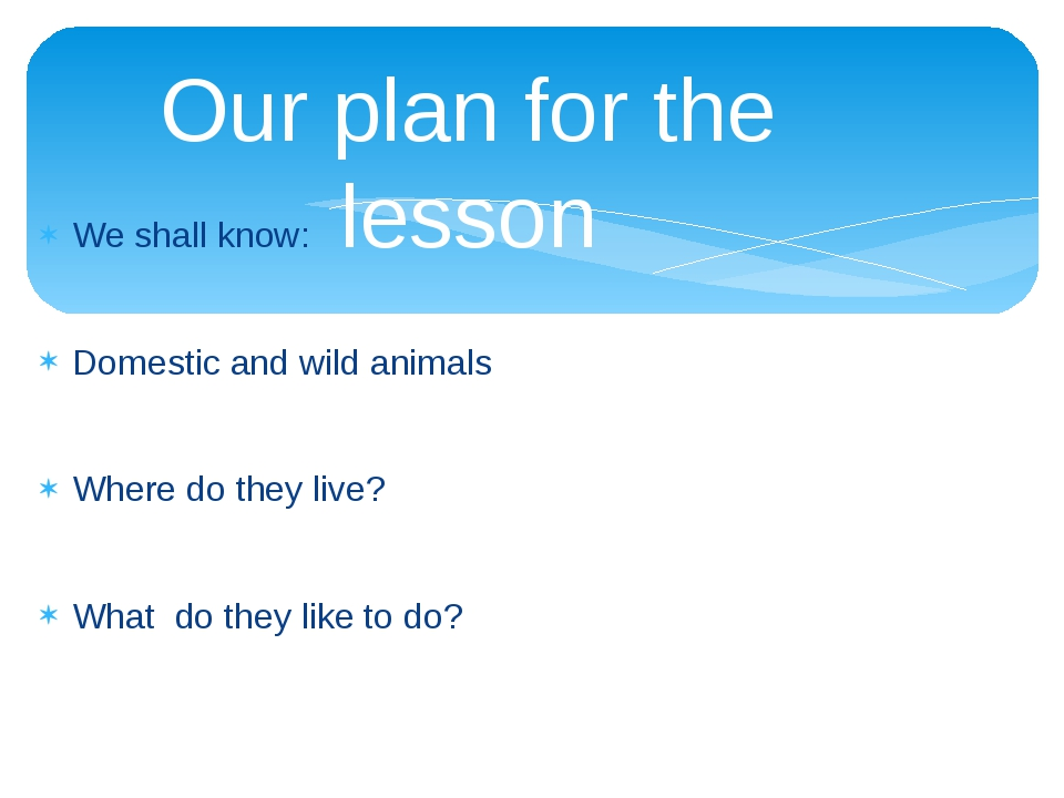 Our plan for the lesson We shall know: Domestic and wild animals Where do the...