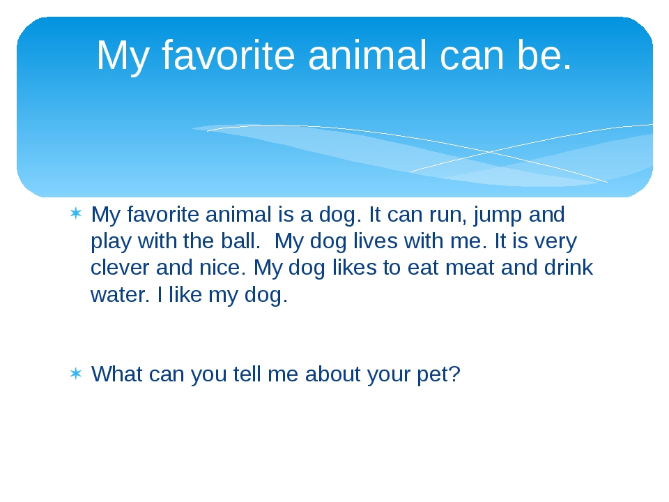 My favorite animal is a dog. It can run, jump and play with the ball. My dog...