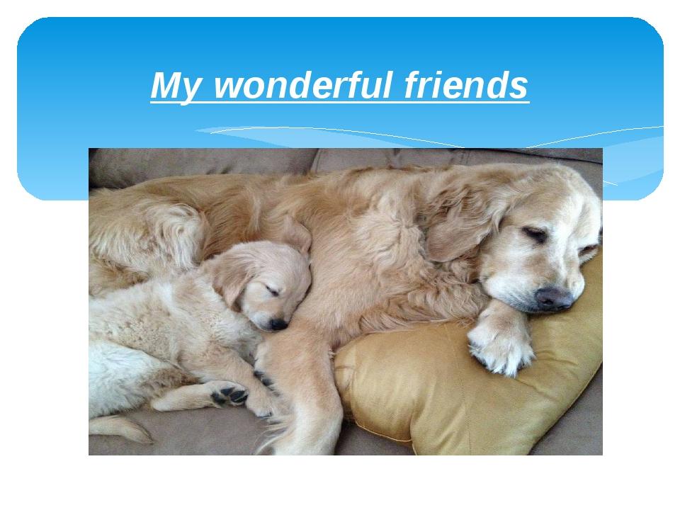 My wonderful friends
