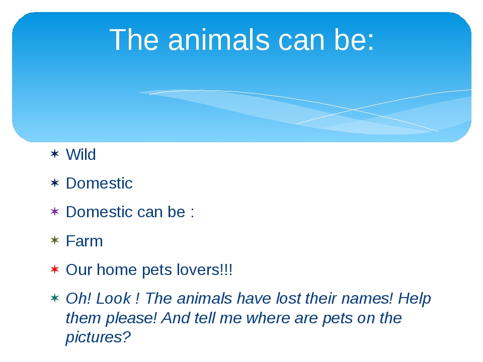 Wild Domestic Domestic can be : Farm Our home pets lovers!!! Oh! Look ! The a...
