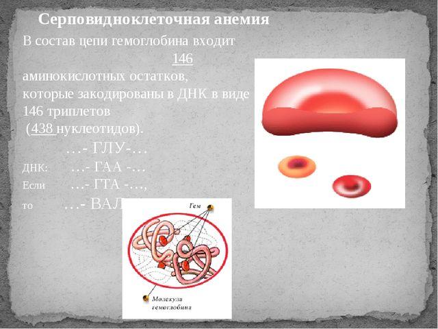 Серповидноклеточная анемия В состав цепи гемоглобина входит 146 аминокислотны...
