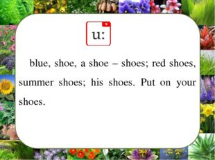 blue, shoe, a shoe – shoes; red shoes, summer shoes; his shoes. Put on your