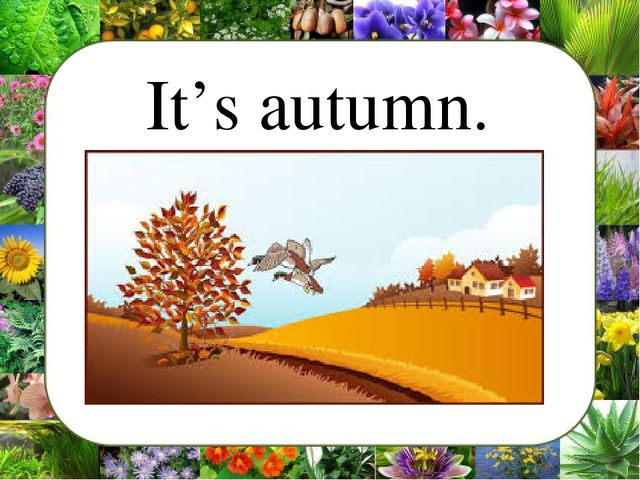 It's autumn.
