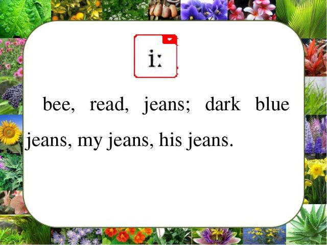 bee, read, jeans; dark blue jeans, my jeans, his jeans.