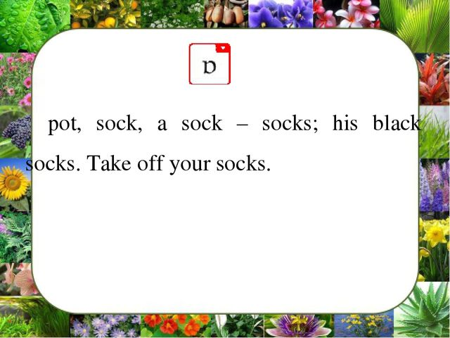 pot, sock, a sock – socks; his black socks. Take off your socks.