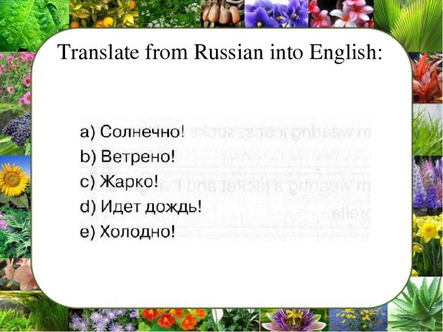 Translate from Russian into English: