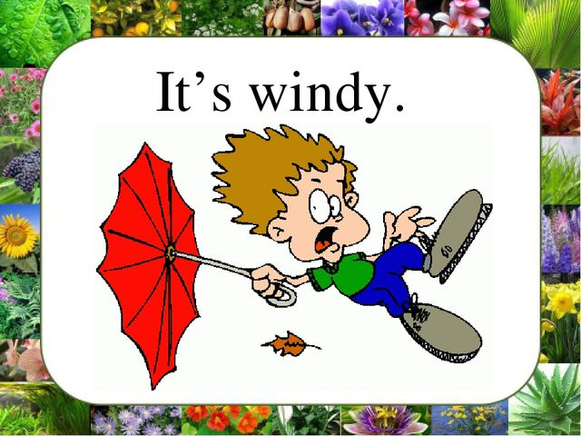 It's windy.