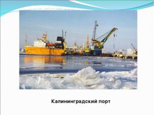 Калининградский порт