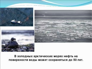 В холодных арктических морях нефть на поверхности воды может сохраняться до 5