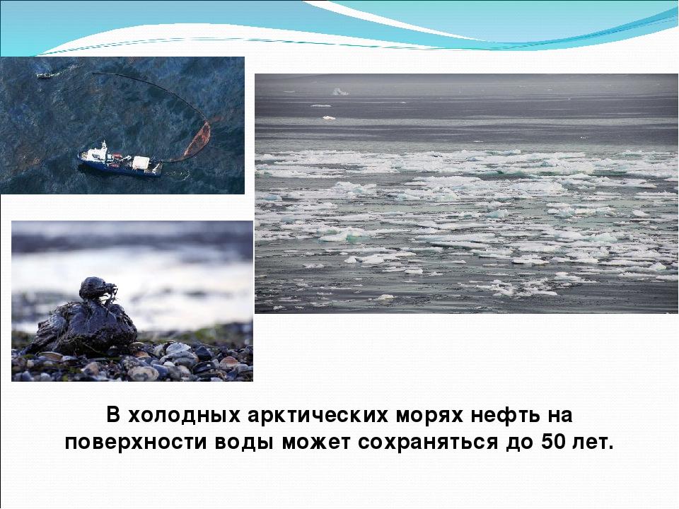 В холодных арктических морях нефть на поверхности воды может сохраняться до 5...