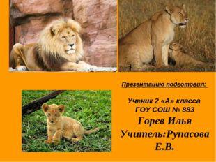 Презентацию подготовил: Ученик 2 «А» класса ГОУ СОШ № 883 Горев Илья Учитель: